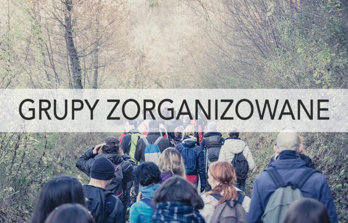 grupy_zorganizowane